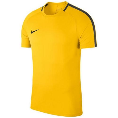 Nike Academy 18 Training Top yellow