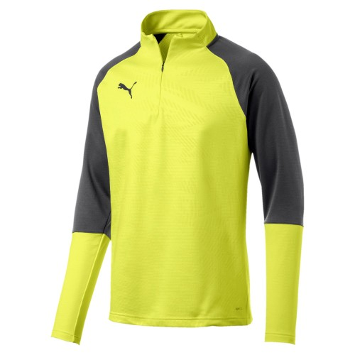 Puma Cup Training 1/4 Zip Top Core