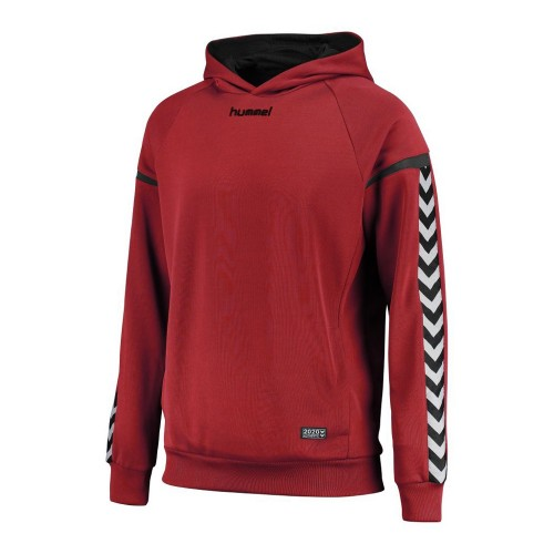 Hummel Hooded Sweatshirt Authentic Charge Poly rot